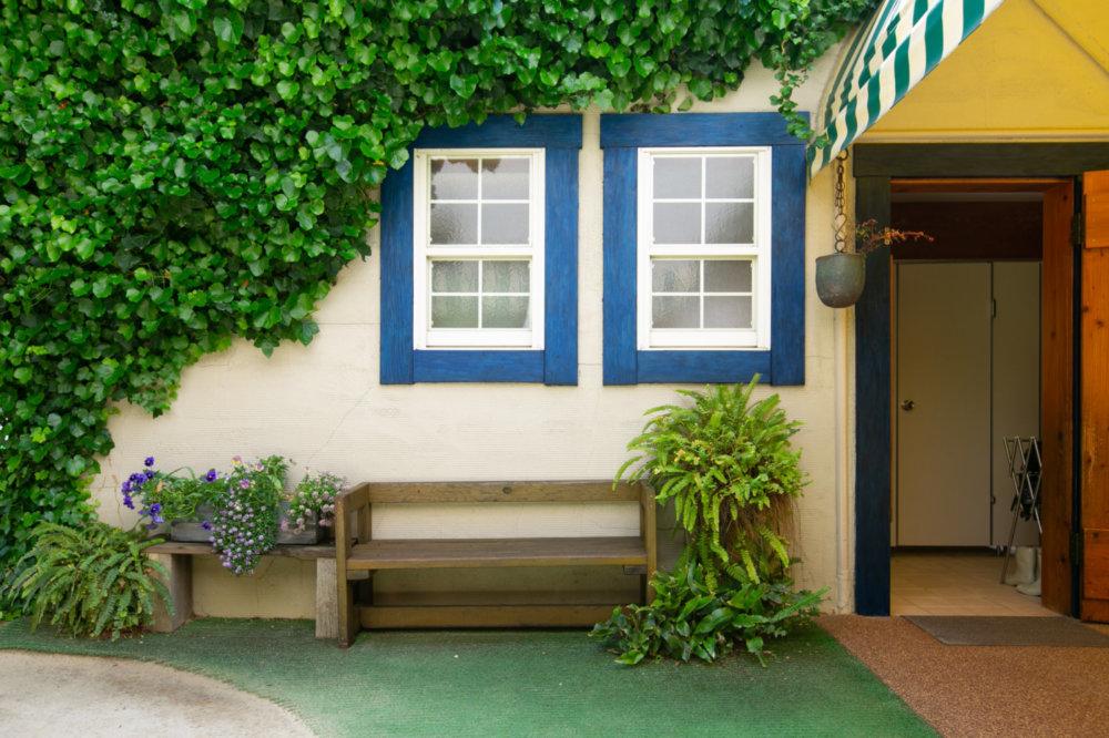 園庭と園舎|にしたかどのわかばようちえん|西高殿若葉幼稚園